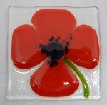 Poppy coaster 5